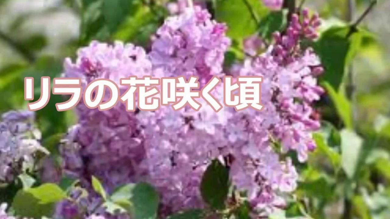 岡本敦郎の画像 p1_7