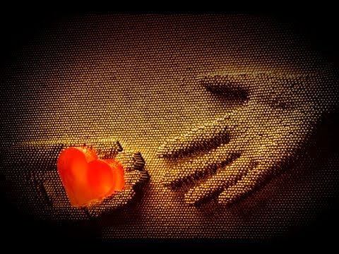 Take My Heart Back, Jennifer Love Hewitt - Legenda Pt Br video