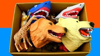 Learn Sea Animal and Wild Zoo Animals Names Video | Toys For Kids
