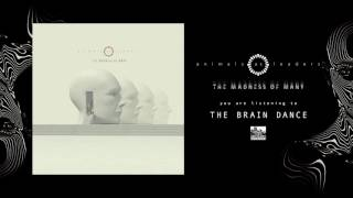 ANIMALS AS LEADERS - The Brain Dance (audio)
