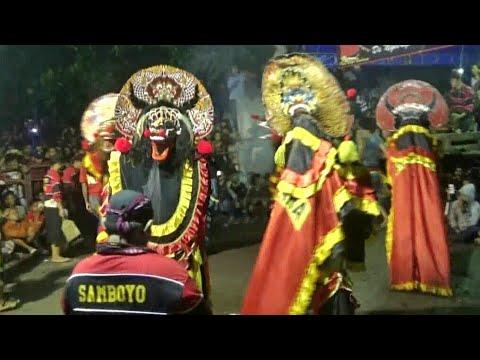 SINGO BARONG SAMBOYO PUTRO SANGAR !!! GALAK !!!!
