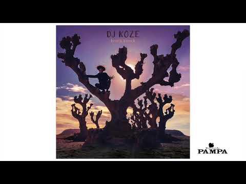 Dj Koze - Bonfire