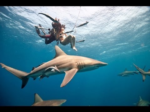 Behind The Scenes: Woman Goes Naked With Sharks To Save Them video