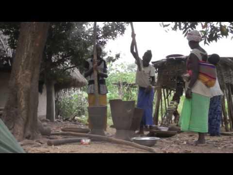 Voyage tourisme Guinée Conakry!