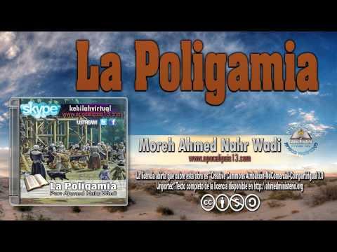 51 La Poligamia Por Ahmed Nahr Wadi