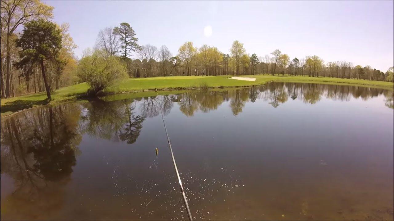 Spring Pond Bass Fishing   Topwater lures Senkos Pt 3