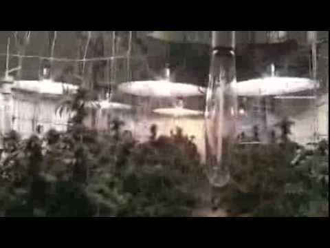 1000th Youtube Upload! Montreal Hydroponics System part 1