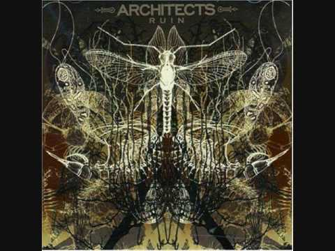 Architects - Youll Find Safety