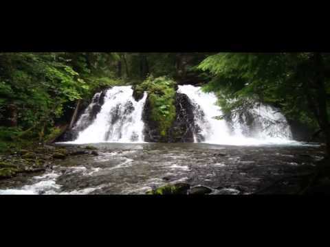 2011 Alaska Gaither Homecoming Cruise 2 video