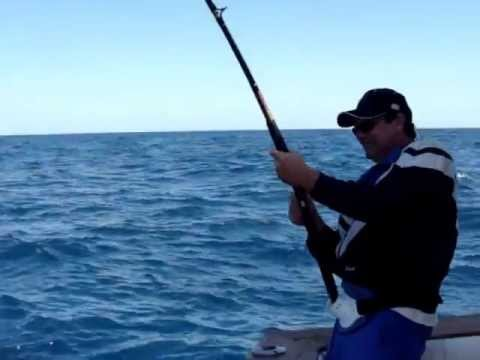 FISHING - SARASOTA - SIESTA KEY LONGBOAT KEY CHARTERS - FL | 941-306-7867