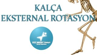 Kalça Eksternal Rotasyon ( Hip External Rotation)