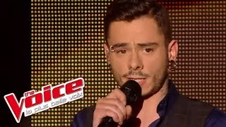Starmania – Le blues du businessman | Maximilien Philippe | The Voice France 2014 | Demi-Finale