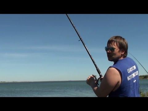 клевая рыбалка на маныче