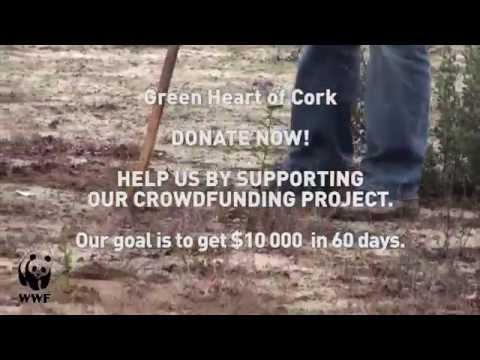 Save Corks, Cats & our Climate - Earth Hour Blue 2015
