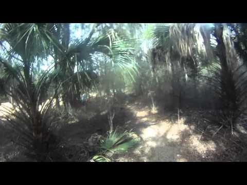 Biking Santos Bike Trails, Ocala FL