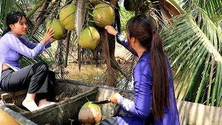 Hái Dừa về làm món Cốm Dẹp vừa béo vừa ngon | Thôn Nữ Miền Tây