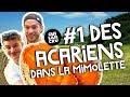 1 Des Acariens Dans La Mimolette mp3