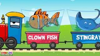 The Sea Animal Words for Toddlers | Sea Animals Train