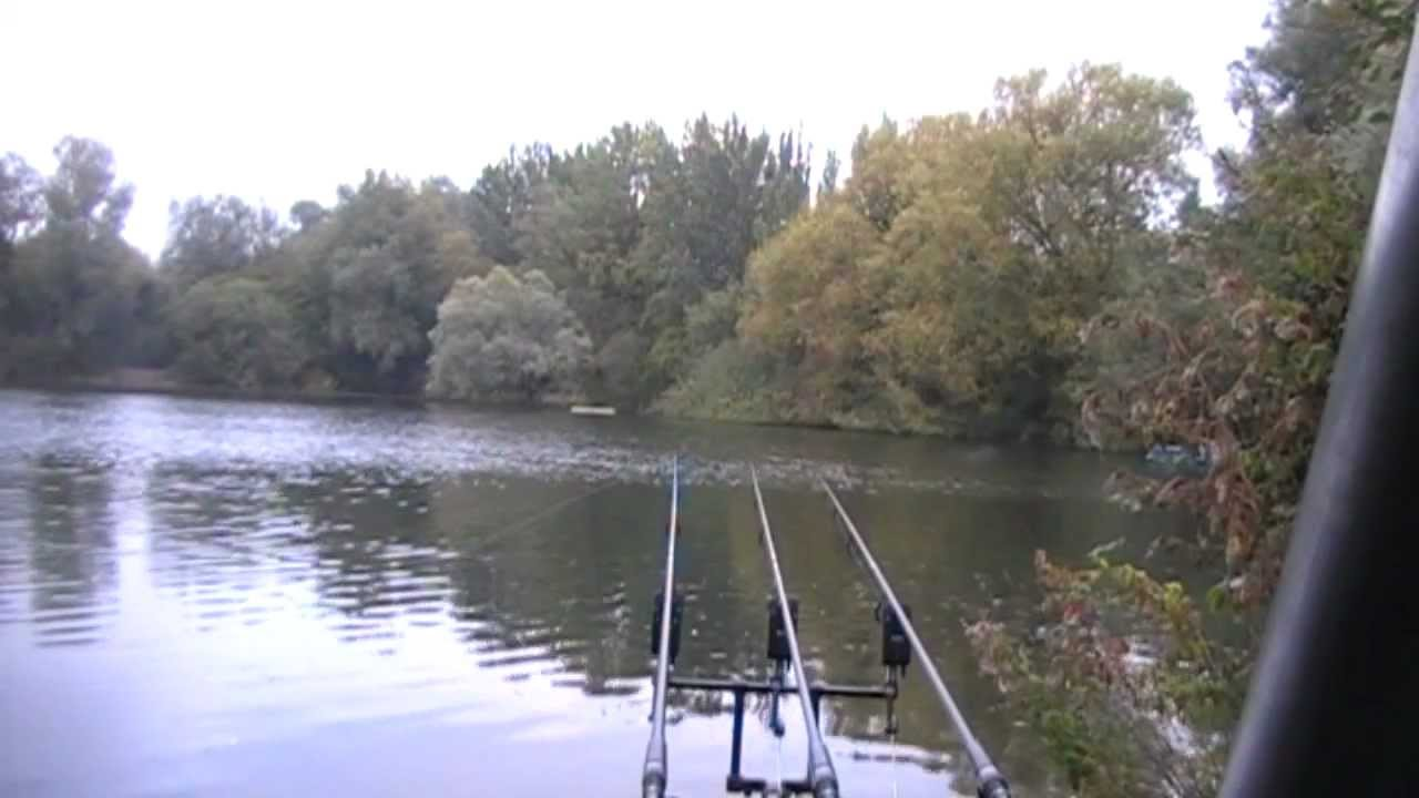 The local pond part 4 quiver tipping for carp carp for Local fishing ponds