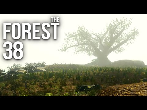 THE FOREST [HD+] #038 - So zogen wir nach Norden ★ Let's Play The Forest