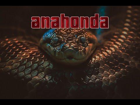 Anahonda