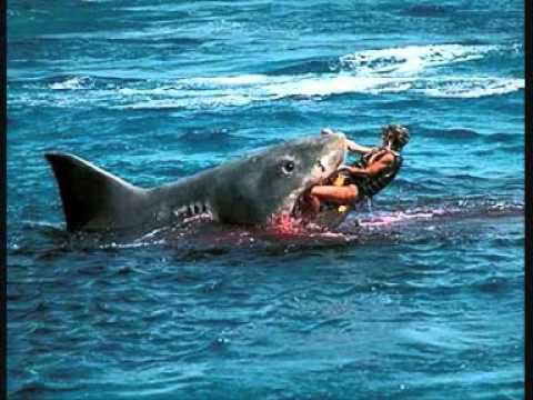 Shark Eating Man Drawing Shark Eats Man