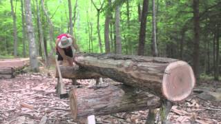 "hewing a white oak 6""x6"""