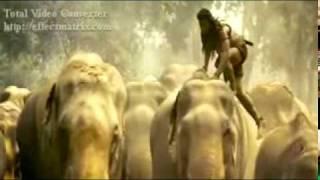 Tony Jaa VS Elephants. Amazing tony jaa. www.vir-zone.com