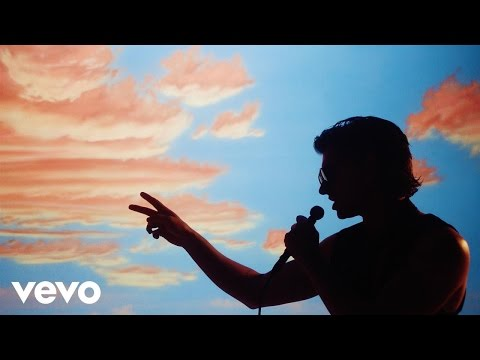 The Last Shadow Puppets Is This What You Wanted music videos 2016 indie