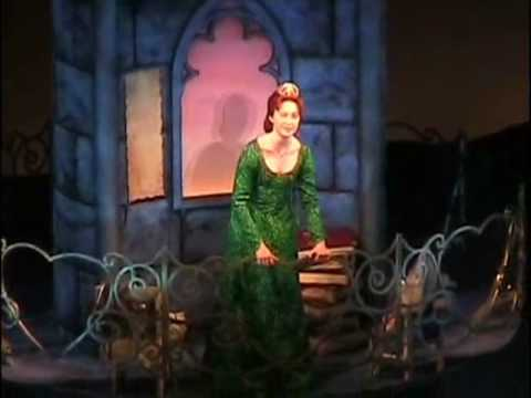 Shrek The Musical - I Know Its Today