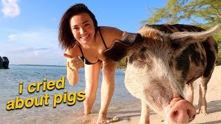 I WENT TO PIG ISLAND *bucket list complete*