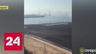 Море в районе порта Восточный покрылось темной пленкой - Россия 24