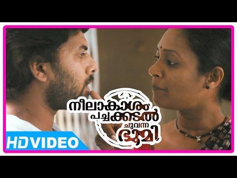 Neelakasham Pachakadal Chuvanna Bhoomi Malayalam Movie   Sunny Wayne   Flirts Servant Maid   Hd video