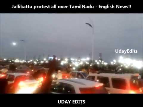 Jallikattu protest all over TamilNadu Engish News - UdayEdits #1