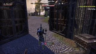 The Elder Scrolls online Me & My girl