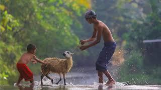 Download Lagu Suling Sunda Alam Pedesaan Gratis STAFABAND