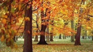 Vídeo 141 de Hymn