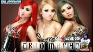Trio Macan Iwak Peyek New 2012 Hot Dangdut