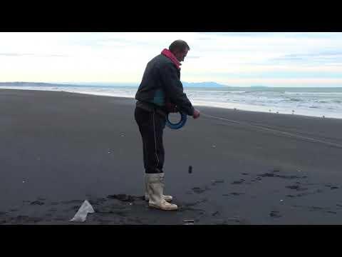 Mokau Beach Fishing With Kites Part 1