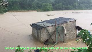 Quay được nước lũ cuốn trôi hai người quá sợ_ Flood water washed away two people_