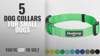 Top 5 Dog Collars For Small Dogs [2018 Best Sellers]: Blueberry Pet 32 Colors Classic Dog Collar,