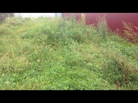 0 - Як прибрати траву на ділянці назавжди народними засобами
