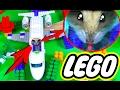ХОМЯК В САМОЛЕТЕ LEGO - ХОМЯЧОК ИДЕТ В ЛАБИРИНТ | ХОМЯК ПРОХОДИТ ПОЛОСУ ПРЕПЯТСТВИЙ | Elli Di Pets
