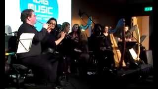 Idig Festival 39 15 Dit Irish Traditional Music Ensemble The Wind Waker Medley