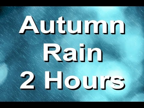 Rain Sounds : The Relaxing Nature Sound Of Rain In Autumn. 2 Hours Long video