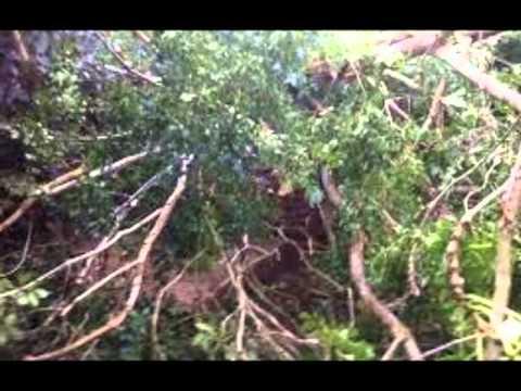 UK weather still affected by ex-hurricane Bertha