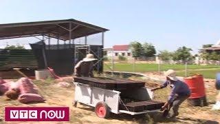 Phát minh máy gieo hạt măng tây xanh | VTC Now
