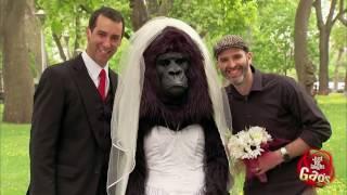 Đùa Chút Thôi Nước Ngoài Siêu Hài Hước - Part 21 (Bridezilla  No, just Gorilla Bride)
