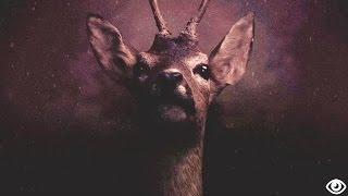 Nguvo - Bangi (Official Music Video)