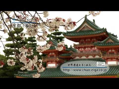 【World Heritage】Kyoto, JAPAN (Spring & Cherry Blossoms) | 世界遺産:京都 (春,桜)